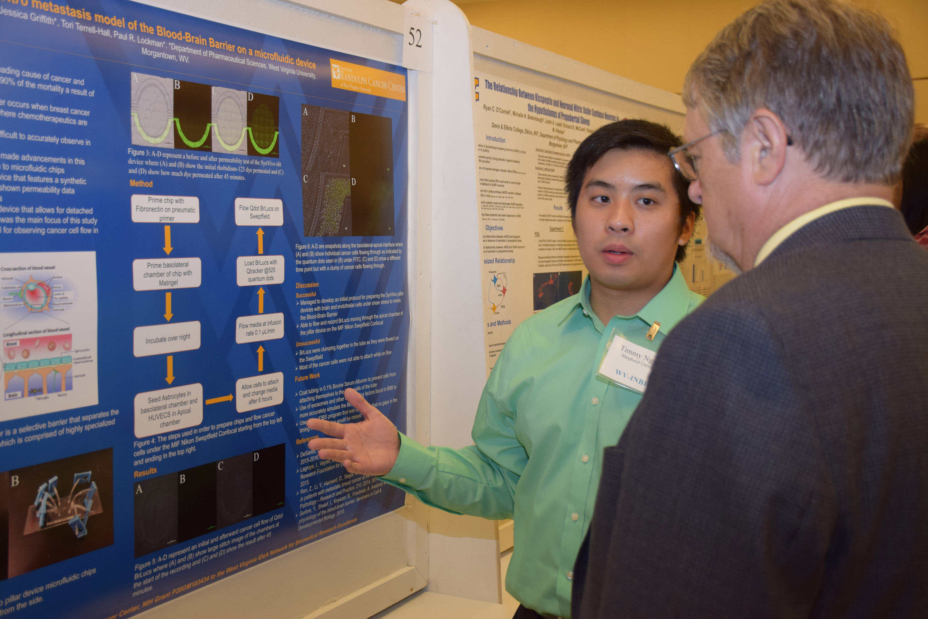 Tim Nguyen discusses his research