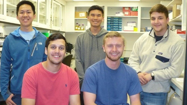 WVU Cancer Institute welcomes 2017 summer research fellows