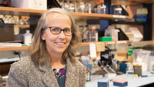 Lori Hazlehurst named as WVU Cancer Institute Associate Director