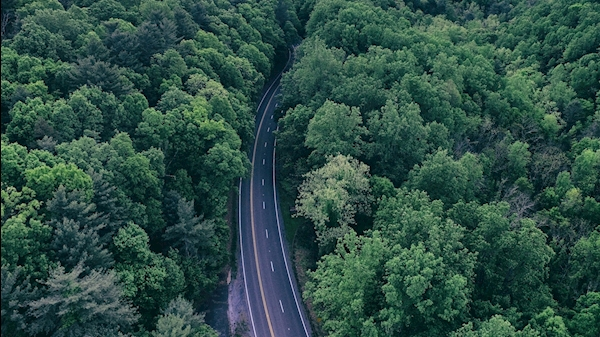 Photo of a road between two hills of dense trees by Aaron Burden on Unsplash