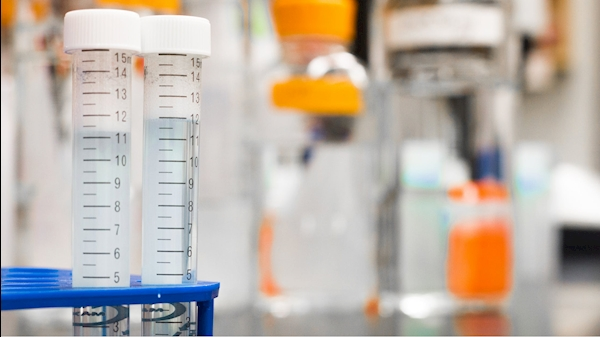 Guidance on Labs from Vice President for Research
