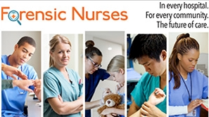 SANE nurses serve as a resource to patients who have experienced trauma