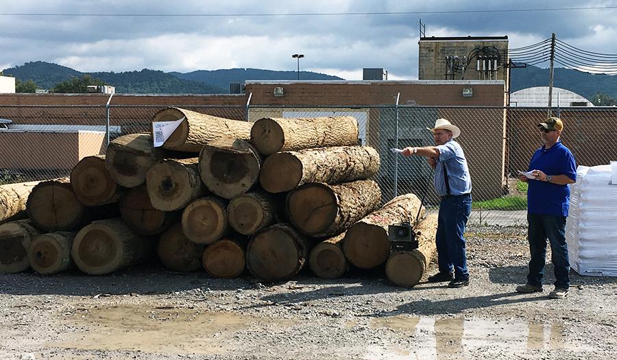 Log-A-Load Auction