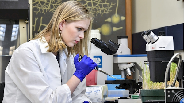 Research funding for WVU hits all-time high at $195 million this past year