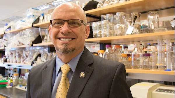 NIH awards WVU $11.2 million for interdisciplinary cancer research