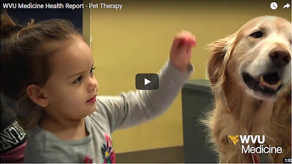 WVU Medicine Health Report - Pet Therapy