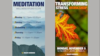 Daily Meditation and Transforming Stress Workshop offered this November