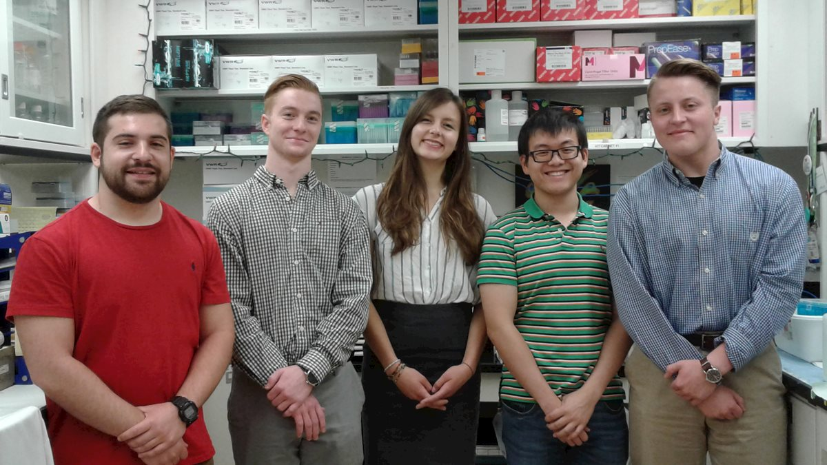 Cancer Institute welcomes 2018 summer undergraduate research fellows