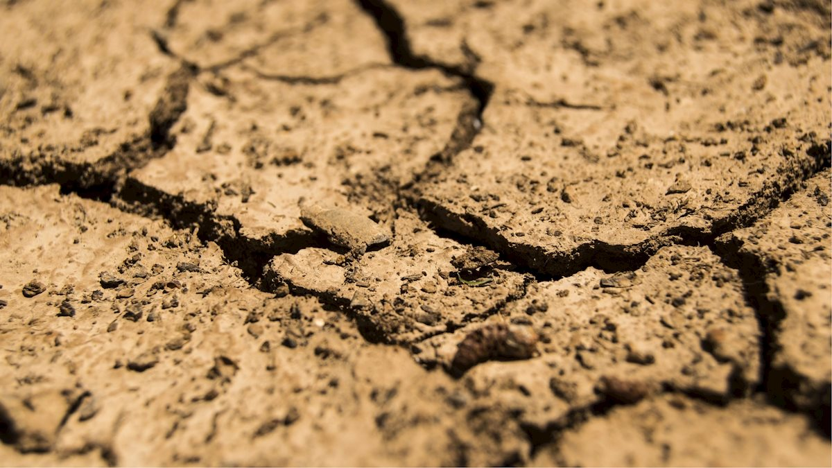 Climate change and public health: Addressing the growing crisis