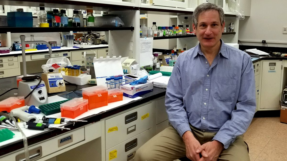 Frisch Named to Review Committee for DoD Ovarian Cancer Research Program