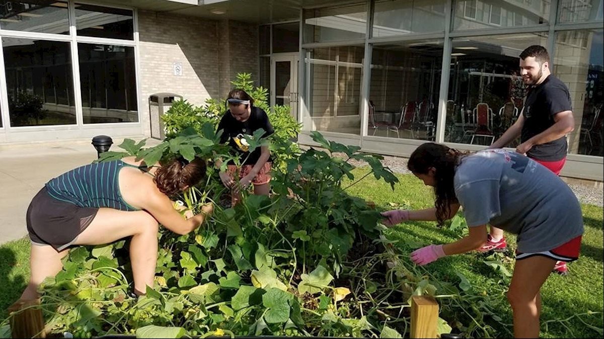HSC student garden group hosts lunch speaker on Friday