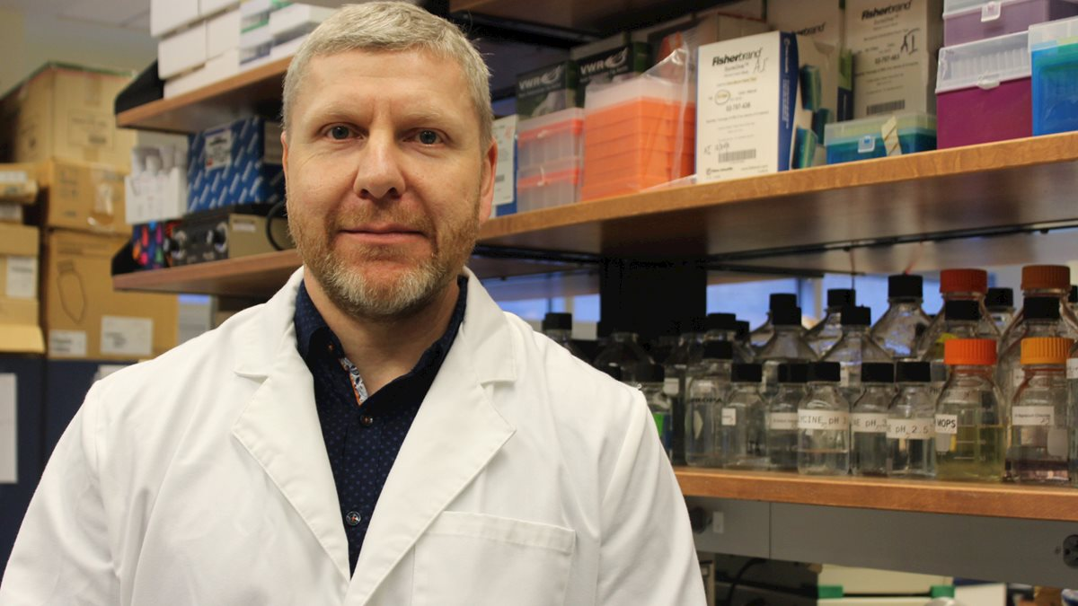 Ivanov Laboratory receives US Patent for new antibody cancer research tool