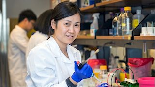Leukemia Research Foundation supports cancer research at WVU