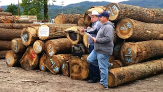 Log-a-Load for Kids auction raises nearly $90K for WVU Medicine Children's