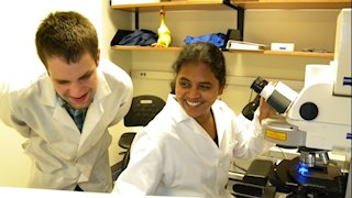 NIH Summer Internship Program announced