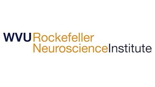 RNI researchers contribute to creation of biomedical marker test for Alzheimer's