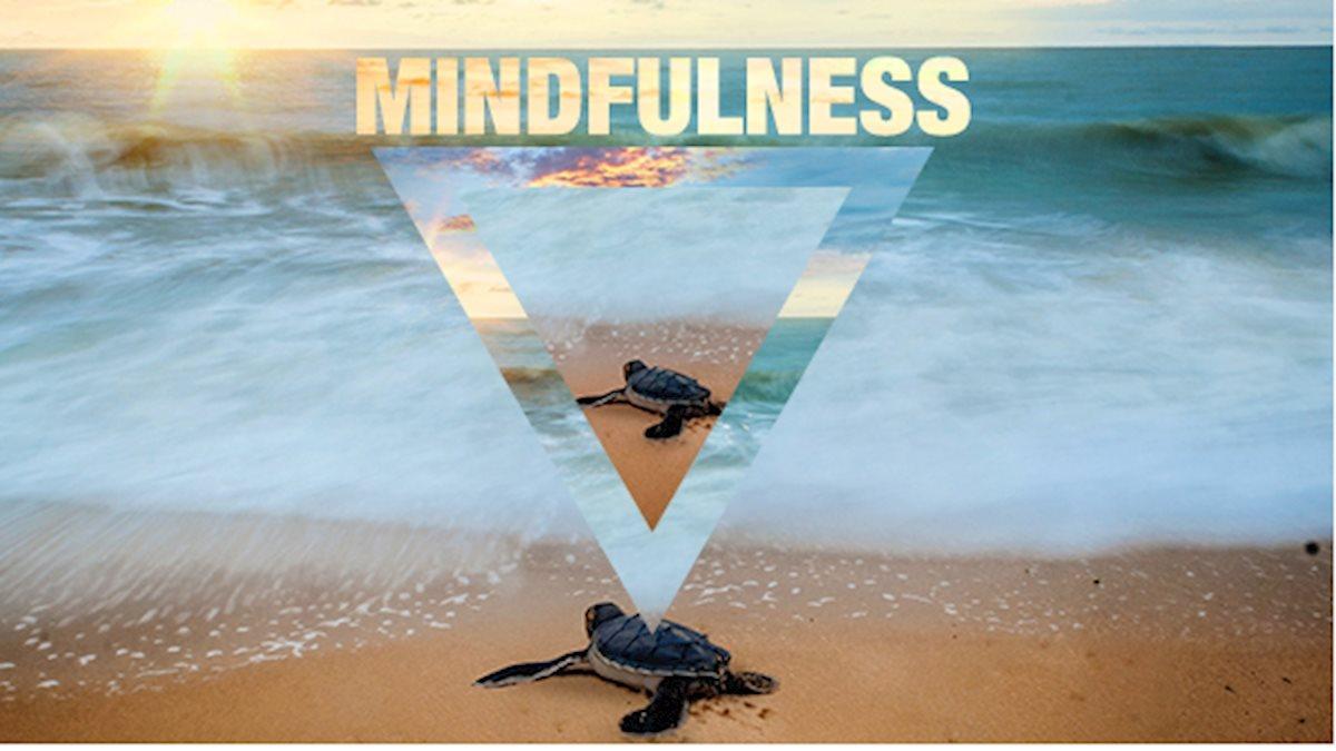 Three Ways to Practice Mindfulness this Summer