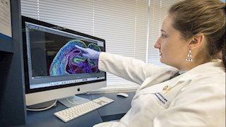"WVU debuts new neuroscience ""Brain Camp"" for high schoolers"