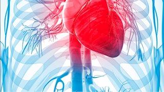 WVU Medicine Berkeley Medical Center receives echocardiography accreditation