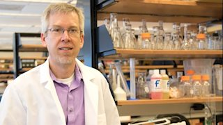 WVU researcher receives $1.7 million award to fight cancer