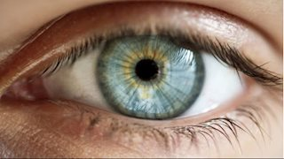 WVU scientist studying the retinal metabolism to reveal underlying causes of retinal diseases